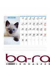 Asztali naptár képes Dayliner álló fehér lapos Cicák 2020.