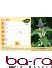 Asztali naptár képes Toptimer T058 álló fehér lapos Gyógyító természet 2020.